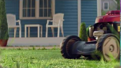 Honda ·; Professional stylist for your lawn